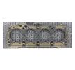 OEM Dichtung, Zylinderkopf RIDEX 8092836 für SSANGYONG