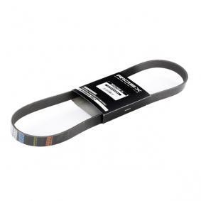 V-Ribbed Belts 305P0054 OCTAVIA (1Z3) 1.6 LPG MY 2010
