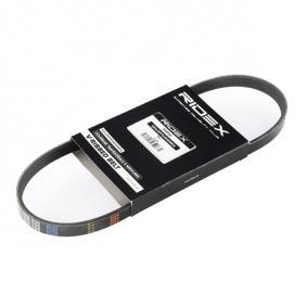V-Ribbed Belts 305P0166 PUNTO (188) 1.2 16V 80 MY 2006