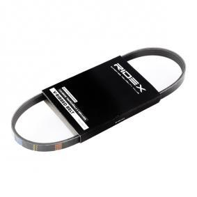 V-Ribbed Belts 305P0006 PANDA (169) 1.2 MY 2021