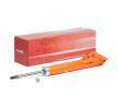 Амортисьор 8750-1067 ОЕМ номер 87501067