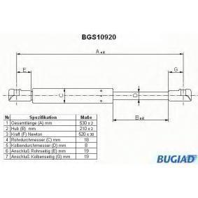 Heckklappendämpfer / Gasfeder BGS10920 X5 (E53) 3.0 d Bj 2004