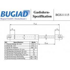 Muelle neumático, maletero / compartimento de carga BGS11115 BRAVO 2 (198) 1.9 D Multijet ac 2012