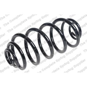 Coil Spring with OEM Number 13333951