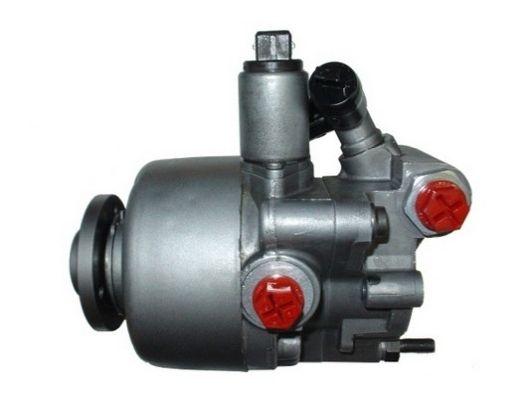 Hydraulic steering pump SPIDAN 54208 expert knowledge