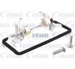 OEM Licence Plate Light VEMO 8236202 for MINI