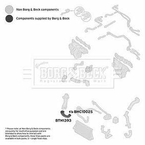 BTH1393 BORG & BECK BTH1393 in Original Qualität