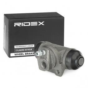 RIDEX 277W0006 conoscenze specialistiche