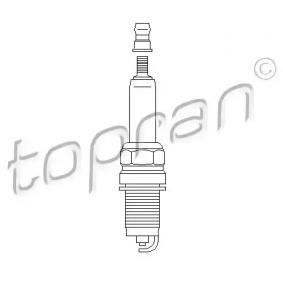 Spark Plug with OEM Number 101905617