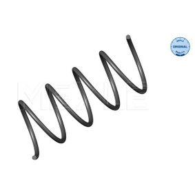 Coil Spring with OEM Number 2033213904