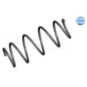 Coil Spring with OEM Number 169 321 2704