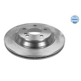 Bremsscheibe Bremsscheibendicke: 22mm, Lochanzahl: 5, Ø: 300mm mit OEM-Nummer 2204230212