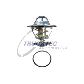 Thermostat, coolant with OEM Number 068 121 113B