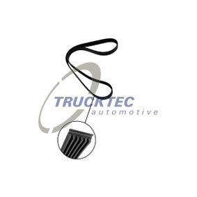 T4 Transporter 1.9TD Keilrippenriemen TRUCKTEC AUTOMOTIVE 07.19.072 (1.9TD Diesel 1999 ABL)
