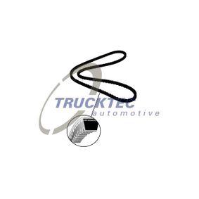 TRUCKTEC AUTOMOTIVE  08.19.094 Keilriemen