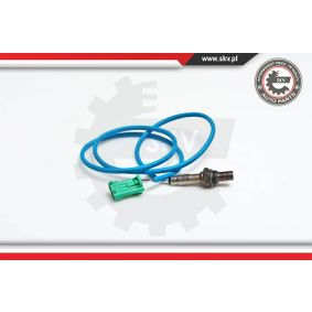 09SKV037 ESEN SKV 09SKV037 in Original Qualität