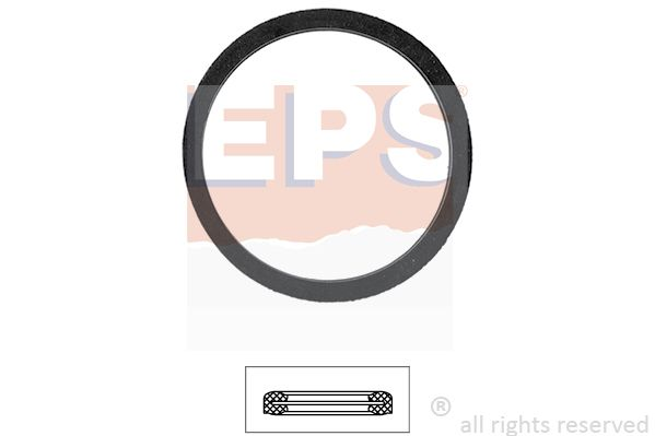 EPS  1.890.556 Dichtung, Thermostat