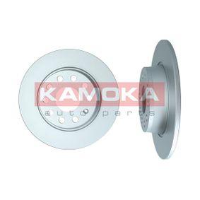 Bremsscheibe Bremsscheibendicke: 10mm, Lochanzahl: 9, Ø: 272mm mit OEM-Nummer 8P0 098 601 P