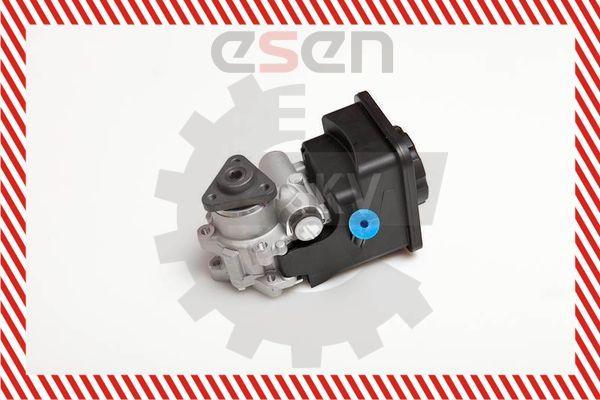 Servo pump ESEN SKV 10SKV012 rating