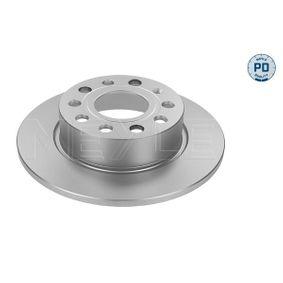 Bremsscheibe Bremsscheibendicke: 10mm, Lochanzahl: 5, Ø: 255mm mit OEM-Nummer 5Q0615601F