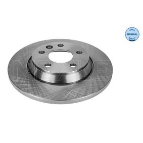 Bremsscheibe Bremsscheibendicke: 13,5mm, Lochanzahl: 5, Ø: 294mm mit OEM-Nummer 7D0 615 601 A