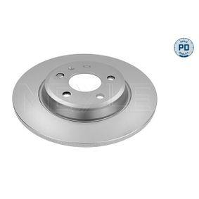 Bremsscheibe Bremsscheibendicke: 12mm, Lochanzahl: 5, Ø: 300mm mit OEM-Nummer 8P0 098 601 P