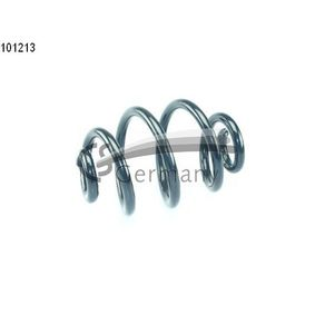 Coil Spring with OEM Number 3353 1138 284