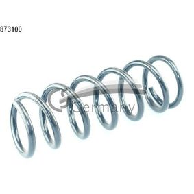 Coil Spring with OEM Number 4813153020