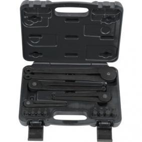 KS TOOLS Κλειδί για παξιμάδια με δυο οπές 150.3205