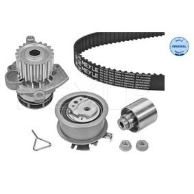 Water pump and timing belt kit Length: 1143mm, Width: 30mm with OEM Number 038 198 119 C