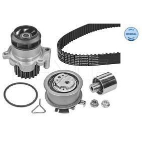 Water pump and timing belt kit Length: 1143mm, Width: 30mm with OEM Number 038198119C