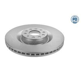 2010 Passat B6 Variant 3.6 FSI 4motion Brake Disc 183 521 1010/PD