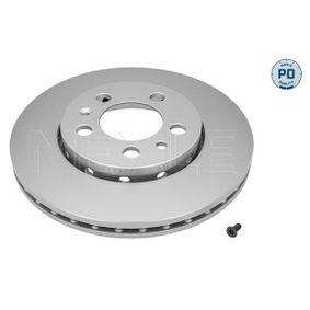 Bremsscheibe Bremsscheibendicke: 22mm, Lochanzahl: 5, Ø: 256mm mit OEM-Nummer 5Z0615301B