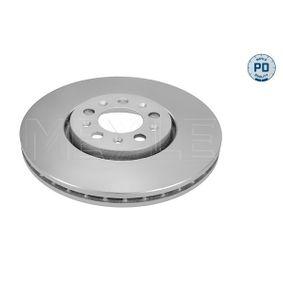 Bremsscheibe Bremsscheibendicke: 25mm, Lochanzahl: 5, Ø: 288mm mit OEM-Nummer JZW615301D