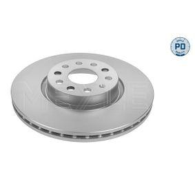 Bremsscheibe Bremsscheibendicke: 25mm, Lochanzahl: 5, Ø: 312mm mit OEM-Nummer JZW 615 301 H