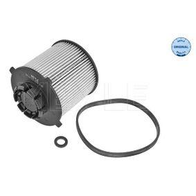 2013 Vauxhall Insignia Mk1 2.0 CDTI Fuel filter 29-14 323 0004