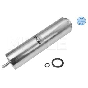 Fuel filter Height: 250mm with OEM Number 13 32 7 811 401