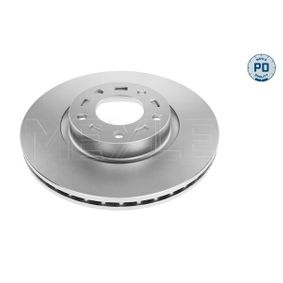 Brake Disc Brake Disc Thickness: 25mm, Num. of holes: 5, Ø: 300mm with OEM Number C26Y-3325X-B