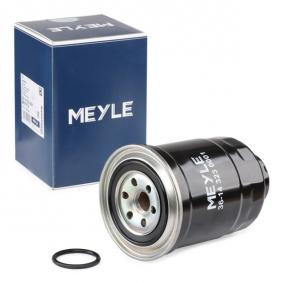 Fuel filter Height: 139mm with OEM Number 1640505E01