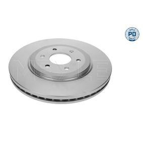 Bremsscheibe Bremsscheibendicke: 28mm, Lochanzahl: 6, Ø: 320mm mit OEM-Nummer 40206 3X00B