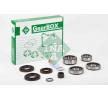 Repair Kit, differential 462014810 INA
