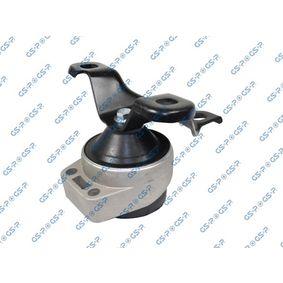 GSP  511389 Lagerung, Motor