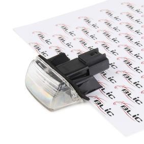 Kentekenlamp 5402-038-06-905 206 Hatchback (2A/C) 1.6 i bj 2000
