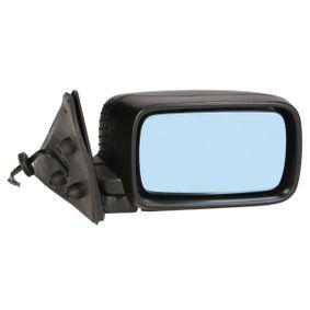 Außenspiegel mit OEM-Nummer 5116-8119-162
