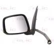 BLIC 5402162001929P Outside mirror