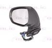 Offside wing mirror BLIC 9900295 Left