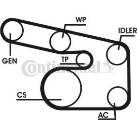 Kit de correa poly v para OPEL Astra G CC (T98, F48, F08