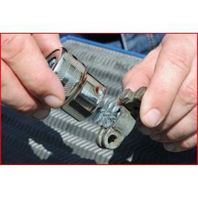 700.1197 Staalborstel, accupoolreiniging van KS TOOLS gereedschappen van kwaliteit