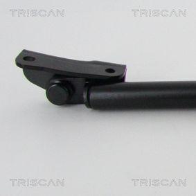 Kofferraum Stoßdämpfer 8710 68215 TRISCAN