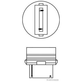89901310 Glühlampe, Blinkleuchte von HERTH+BUSS ELPARTS Qualitäts Ersatzteile